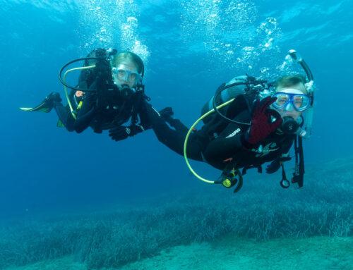 Κατάδυση στην Καταφυγή – Dive at Katafigi 1/11