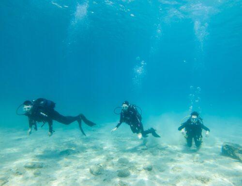 Κατάδυση στα Λεγρενά – Dive at Legrena 8/11