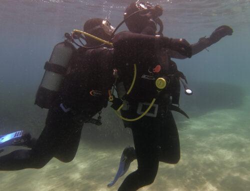 Σχολείο Διάσωσης δύτη (Rescue diver) 7-8 Νοεμβρίου